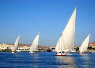 Dhows on the Nile