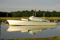 Motor Gun Boat No81  Built 1942 By British Power Boat Co Hythe