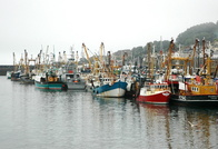 Fishing Boats at Newlyn