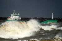 Arklow Rose on the Mersey for Manchester