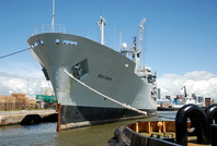 Ship of Month July RFA Gold Rover