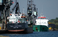 Sea Kestrel & Arklow Swan 30/4/07