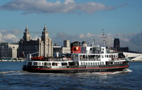 Royal Iris of the Mersey