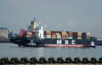 MSC Mandy IMO 8918966 37071gt Built 1993 Container Ship
