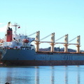 Free Neptune IMO 9146819 17997gt Built 1996 Bulk Carrier at Birkenhead