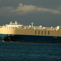 Asian Captain IMO 9158616 71383gt Built 1998 Car Carrier