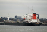 Lord Hinton IMO 8402864 14201gt Built 1986 Bulk Carrier