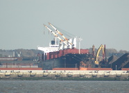 ID Tide IMO 9104603 25968gt Bulk Carrier
