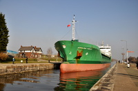 Arklow Field 5th March 2013