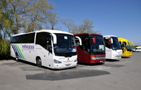 Coaches at Godshill