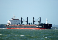 Common Calpyso IMO 9594705 32987gt Built 2010 Bulk Carrier