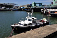 Avocet  MVS Harbour Patrol